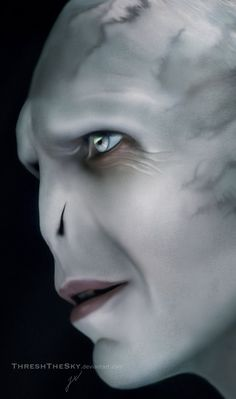 Harry Potter: Lord Voldemort by ThreshTheSky on DeviantArt