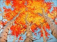Anton Pavlenko: Painting to New Heights LOVE THIS - we'll give it a try- Anton Pavlenko is wonderful self taught artist, love his perspective, nice alternative for teaching perspective to Cali Art Painting, Art Photography, Autumn Painting, Painting Inspiration, Painting, Art, Fall Tree Painting, Autumn Art, Beautiful Art