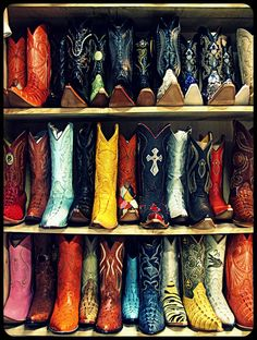 you know your a true texan when you cancel all of your plans just to see the rodeo! ha