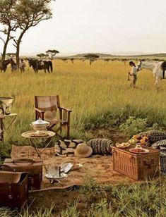 picnic in Serengeti National Park, Tanzania