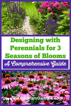 Learn how to Design a Perennial Garden that blooms from early spring to fall with the comprehensive guide - Designing with Perennials for 3 Seasons of Blooms. Includes step-by-step directions, along w Flower Garden Layouts, Flower Garden Plans, Garden Design Plans, Flower Garden Design, Garden Ideas, Spring Perennials, Shade Perennials, Flowers Perennials, Perennial Garden Plans