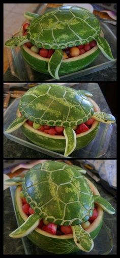 How to Make a Watermelon Turn into a Turtle
