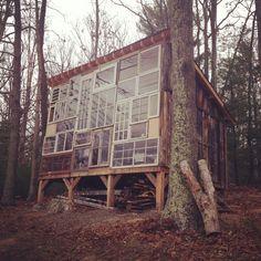 forest studio