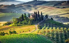 Pinterest Facebook 33. Colors of Tuscany, Italy