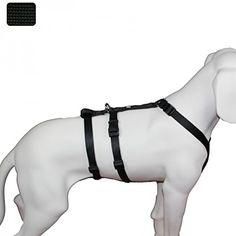 Aus der Kategorie Sicherheitsgeschirre  gibt es, zum Preis von EUR 41,95  Für Hunde, die z.B. aus Angst in Panik geraten, daher flüchten wollen oder sich aggressiv zur Wehr setzen und eine Möglichkeit suchen sich aus dem Brustgeschirr zu befreien. <b> Für therapiebedürftige Hunde. <b> Für Hunde, die Stresssituationen nicht gewachsen sind z.B. bei U-Bahnfahrten, Busfahrten, unvorhergesehenen Geräuschen usw. <b> Für Hundebesitzer eine Sicherheit, dass sich der Hund bei extremen…