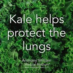 The power of kale for optimal health and healing. Learn more: BasilHealth at www… - Health Remedies Tomato Nutrition, Health And Nutrition, Health Tips, Health And Wellness, Health Fitness, Cheese Nutrition, Gut Health, Wellness Tips, Natural Cures