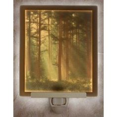 Woodland Sunbeams COLOR Flat Porcelain Lithophane Nightlight  Woodland Sunbeams Flat Porcelain Lithophane Nightlight , Our most popular Lithophane product is the plug-in night light. First invented in France in 1827, a Lithophane is a porcelain engraving that virtually comes alive when illuminated from behind! The image is created by a panel of different thicknesses of translucent, #kiln-fired porcelain. A breathtakingly detailed picture in warm sepia tones emerge when lit. The small…