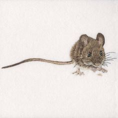 Wood Mouse Original Hand Embroidery