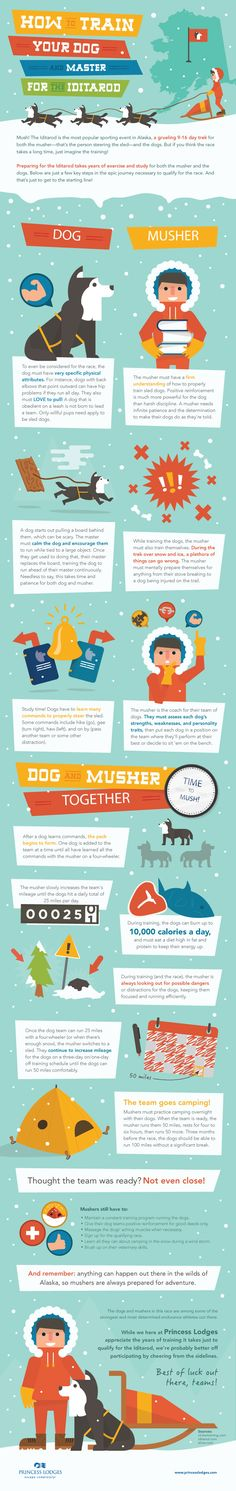 Great guide for training dogs for Iditarod. Not that I would but this guide is SO cool. (Selfish plug, my company created it!)