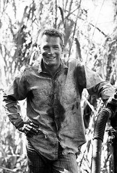 Paul Newman on the set of Cool Hand Luke, 1966.