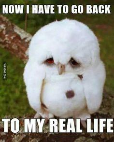 I hate that feeling.