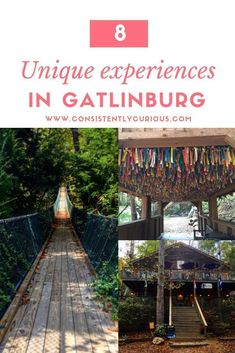 Things To Do In Gatlinburg, TN: Venturing Beyond the Strip : Looking for a unique experience in TN? Be sure to try out these off the beaten path restaurants and attractions the next time you visit Gatlinburg Vacation, Tennessee Vacation, Gatlinburg Tn, Gatlinburg Attractions, Gatlinburg Tennessee Restaurants, Nashville Tennessee, Nashville Vacation, Franklin Tennessee, East Tennessee