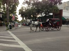 Take a carriage ride! A Hitch 'N Time Carriage stand located at the corner of Fourth Ave. & Alexander St. Mount Dora, FL 32757