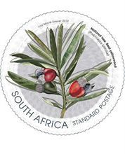 The Post Office has released a set of 8 stamps which have been illustrated by Lize Marié Dreyer, that celebrate South Africa's national symbols. Union Of South Africa, Office Stamps, African Symbols, Freedom Day, National Symbols, African Animals, African Art, Flower Stamp, Mail Art