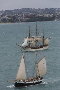 Tecla and Europa tallship race NZ