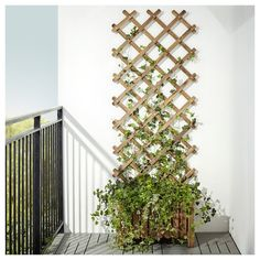 Backyard Ideas Discover ASKHOLMEN Flower box with trellis outdoor gray-brown stained - IKEA Hanging Plants, Potted Plants, Outdoor Plants, Outdoor Decor, Ikea Outdoor, Plants Indoor, Small Outdoor Spaces, Air Plants, Small Balcony Garden