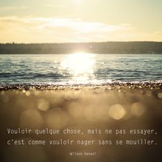 #CitationDuJour « Vouloir quelque chose, mais ne pas essayer, c'est comme vouloir nager sans se mouiller. » -Wilson Kanadi