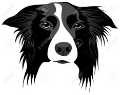 Image result for border collie illustration