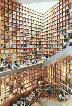 la plus grande bibliothèque