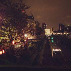 #cherryblossom #railway #train #nakano #Tokyo