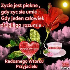 Good Morning Funny, Morning Humor, Nova, Movies, Movie Posters, Films, Film Poster, Cinema, Movie