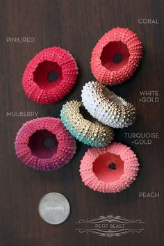 3 OMBRE Replacement Sea Urchin Shells // Jellyfish by PetitBeast, $15.00