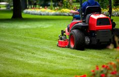 5 Cool Steps To A Better Lawn And Garden Home Improvement Home Design Image Gallery HomeDesignRenovations.Com