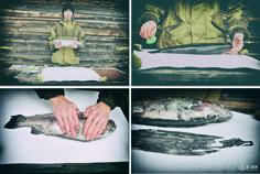 Printmaking. Print on paper fish. www.elnik.net Paper Fish, Textile Fabrics, Printmaking, Polaroid Film, Artist, Painting, Artists, Painting Art, Printing