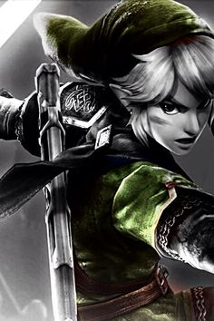 collegelessons:  Hyrule Warriors  This is probably one of my favorite pieces of Link art