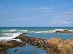 Côte sauvage à la Chaume - Les Sables-d'Olonne — Wikipédia