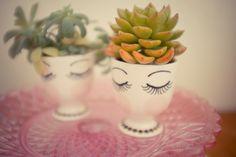 Le petit compotier rose et les succulentes demoiselles