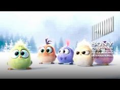 The Angry Birds Movie – Happy Christmas from the Hatchlings! - At Cinemas May 2016 - YouTube