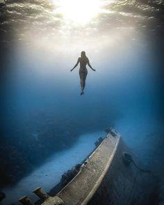 Deer Photography, Underwater Photography, Underwater Images, Underwater World, Girl In Water, Water Art, Amazing Pics, Digital Portrait, Ocean Life