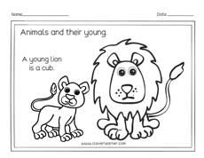Animals and the names of their young ones worksheets for preschools |  Preschool, Shapes preschool, Preschool worksheets