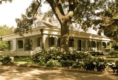 The Beautiful Myrtles Plantation...St Francisville LA - The most haunted house n America