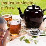 Stari de neliniste și agitatie – cauze si remedii naturiste | La Taifas Metabolism, 3, Tea Pots, Tableware, Plant, Dinnerware, Dishes, Place Settings, Tea Pot