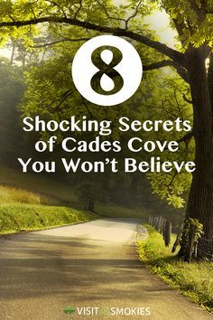 8 Shocking Secrets of Cades Cove You Won't Believe www.visitmysmokie… Informations About 8 Shocking Secrets of Cades Cove You Won't … Gatlinburg Vacation, Gatlinburg Tennessee, Tennessee Vacation, Tennessee Camping, Tennessee Smokies, Cabins In Gatlinburg Tn, Smoky Mountains Tennessee, Great Smoky Mountains, East Tennessee