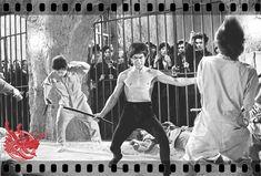 Bruce Lee Pictures, Enter The Dragon, Martial Arts, Concert, Anniversary, Martial, Legends, Bruce Lee Photos, Concerts