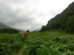 Okolo Loch Lomond