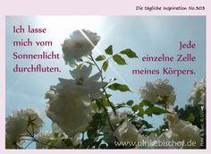 Die tägliche Inspiration No.303 www.inspirationenblog.wordpress.com www.ulrikebischof.de