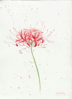 Flowers Watercolor Tattoo Beautiful 27 Ideas For 2019 Watercolor Cards, Watercolor Flowers, Watercolor Tattoo, Watercolor Paintings, Japan Watercolor, Flor Tattoo, Lilies Drawing, Red Spider Lily, Lily Painting