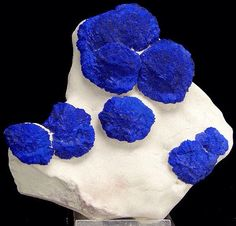 "Great specimen of azurite ""suns"" on contrastive white matrix from Australia. Very aesthetic. Minerals And Gemstones, Crystals Minerals, Rocks And Minerals, Crystals And Gemstones, Stones And Crystals, Gem Stones, Cool Rocks, Beautiful Rocks, Azurite Malachite"