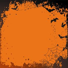 Halloween Backdrop Orange and Black - DuraLux Cloth