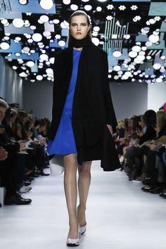 Christian Dior Ready To Wear Fall Winter 2014 Paris