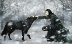 Yes, I think Loki can be friend with animals... With people... no.