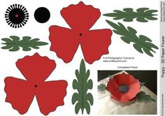 Poppy 3D Paper Flower on Craftsuprint designed by Sandie Burchell - New Category 3D Paper Flowers - Beautiful 3D Paper Poppy.
