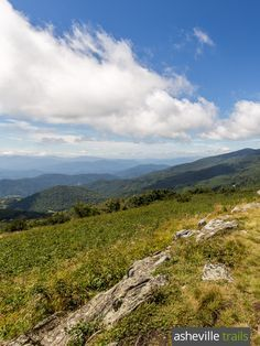 Hike the Appalachian Trail through the Roan Highlands, catching stunning view after stunning view from Roan's grassy, wildflower-covered mountain balds