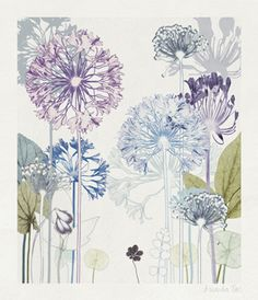 TROWBRIDGE - Amanda Ross Agapanthus Wood - These exquisite wild flower prints are by the English artist Amanda Ross. Amanda takes her inspiration from the countryside which surrounds her.The life-like quality of her work is achieved by printing directly from the cuttings that she takes.This series of four fine art giclee reproductions of her original works are of a Limited Edition of 295 and each is signed by the artist. They are printed on 250 gms Somerset Velvet fine art ...