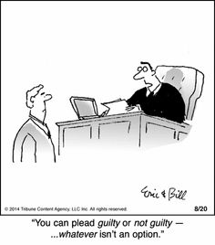 You can plead guilty or not guilty
