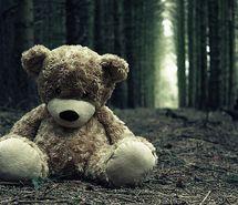 lost, sad, teddy bear